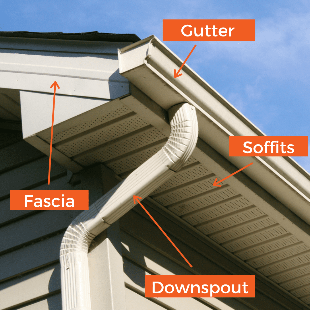 Image pointing out fascia, soffits, gutters, and downspouts on a house.